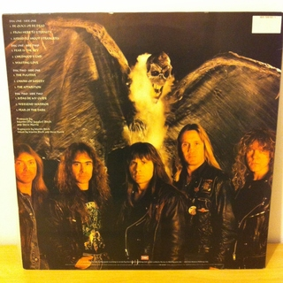 Iron Maiden - Fear Of The Dark [LP Duplo] - 180 Selo Fonográfico