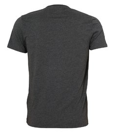 Camiseta masculina Abercrombie & Fitch Stripped GRY na internet
