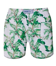 Shorts Regular Gin - comprar online