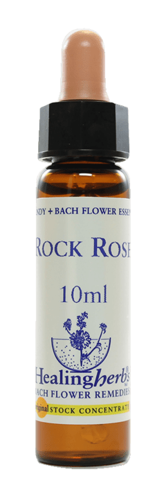 FIVE FLOWERS FLORAL DE BACH 10ML - comprar online