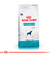 Royal Canin Hypoallergenic Perro