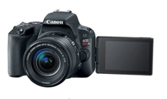 Canon EOS Rebel SL2 en internet