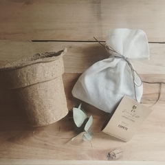 Kit de cultivo con maceta biodegradable - comprar online