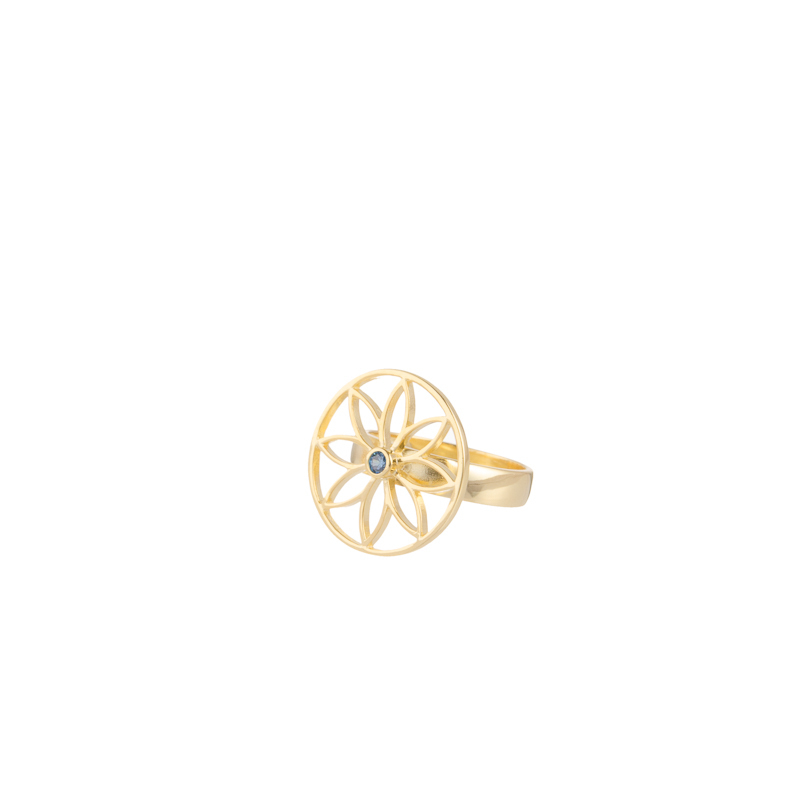 Gold Plated Mandala Petit Net Ring
