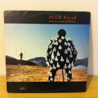 Pink Floyd - Delicate Sound of Thunder [LP Duplo] na internet