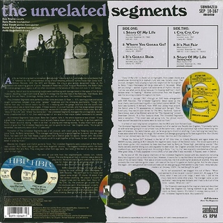 "Unrelated Segments - The Unrelated Segments EP [10""] na internet"