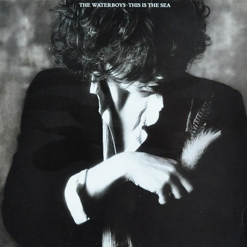Waterboys - This Is The Sea [LP] - comprar online