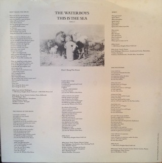 Waterboys - This Is The Sea [LP] - 180 Selo Fonográfico