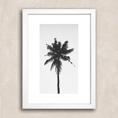 Poster Palm Tree Solo - comprar online