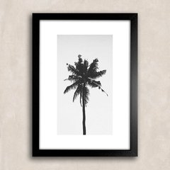 Poster Palm Tree Solo