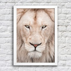 Poster White Lion na internet