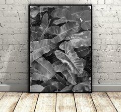 Tropical Leaves in Black and White