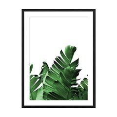 Banana Leaves I - Sur Arte Shop - Láminas y Cuadros