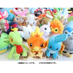 Peluche Pokemon Treecko Fit Pokemon Center Japón - tienda online