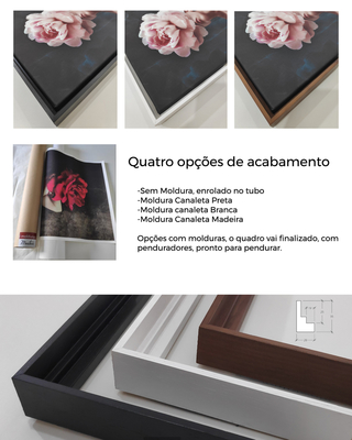 Quadro Decorativo -Pilares Grego na internet