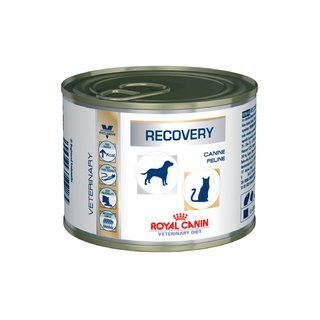 Recovery Veterinary Diet