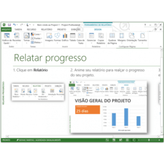 Imagem do Microsoft Project 2013 Professional 32/64Bits