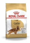 ROYAL CANIN BHN COCKER 3KG - comprar online
