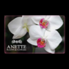Gift Card Anette