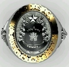 Classic ring of the military academy of the black needles (aman) in sterling silver (950) gold (750) 18k - buy online