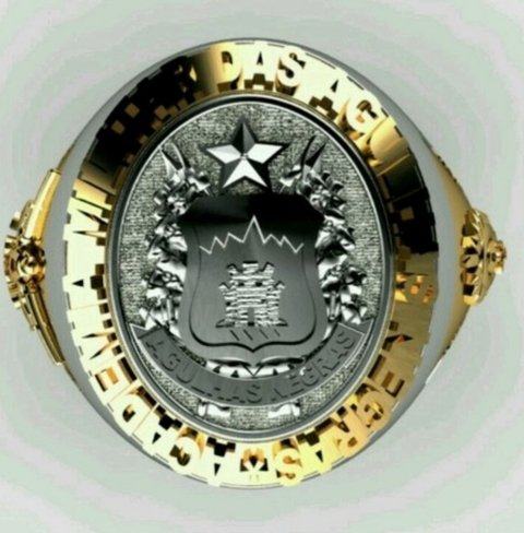 Classic ring of the military academy of the needles black gold (750) 18k with bezel in sterling silver (950) - buy online