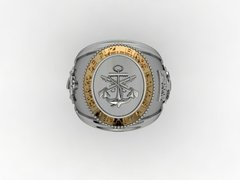 Ring of the Corps of Marines in Silver and Gold - buy online