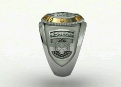 Topographer's Ring of the School of Silver Logistics sergeants with gold accents on internet