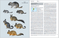 Handbook of the Mammals of the World - Volume 6 - comprar online