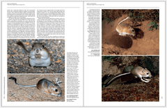 Handbook of the Mammals of the World - Volume 6 - tienda online