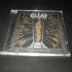 Outlaw - The Fire in My Tomb Cd