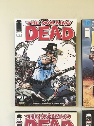 Combo 4 cuadros The Walking Dead Comic