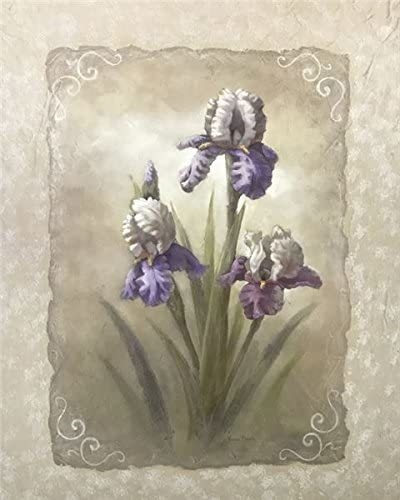 Iris Scroll - Vivian Flasch