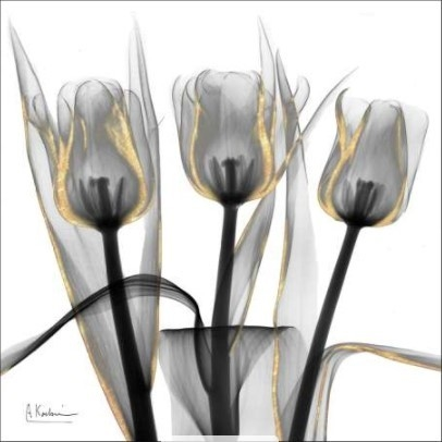 Gold Embellished Tulips IV - Albert Koetsier