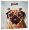 Canine Eye Exam - Lucia Heffernan na internet