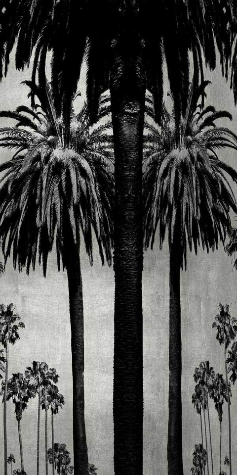 Palms with Silver II - Kate Bennett