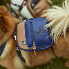 DOG BACKPACK ROCKET BLUE