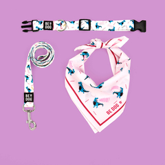 FULL KIT COLLAR - BE REXY WHITE / NEW IN! con bandana