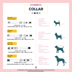 COLLAR BE REXY YELLOW - be-dog.com