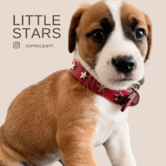 LITTLE STARS - PAM * Peek and Miis - Boutique Mascotera-*