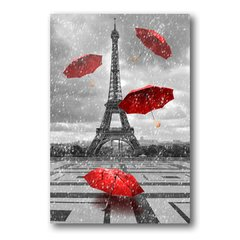 PLACA PARIS CHUVA