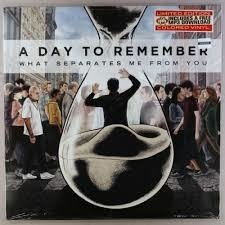 A Day to Remember - What separates me from you (Vinilo LP)
