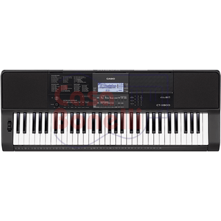 Teclado 5 Octava sensitivo Casio CT-x800