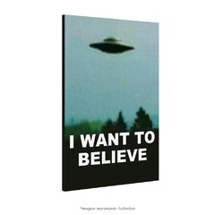 Poster I Want to Believe - Arquivo X na internet