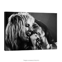 Poster Freddie Mercury e Roger Taylor na internet