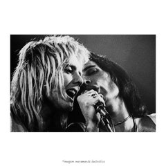 Poster Freddie Mercury e Roger Taylor - QueroPosters.com