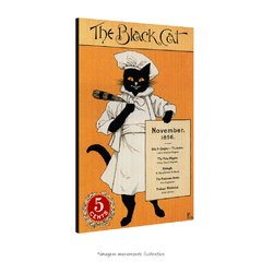 Poster The Black Cat na internet