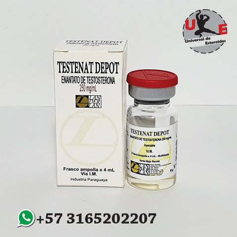 Durateston organon 250mg to oz does optimum nutrition whey protein contain steroids