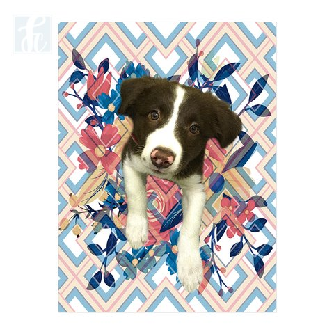 Placa Decor Pet Personalizada - Floral e Chevron