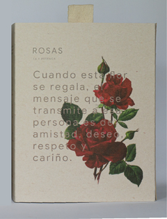 Gift Box Relax Rosas - comprar online