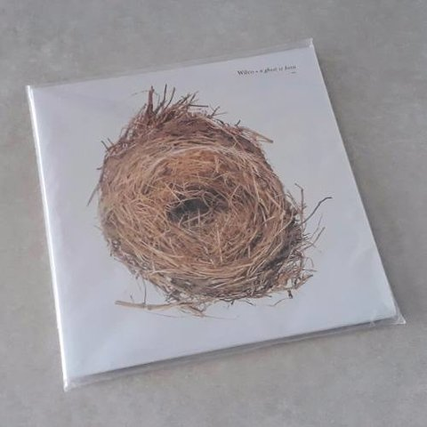 Vinil Lp Wilco A Ghost Is Born 2-lps Lacrado